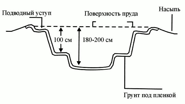 Схема устройства простейшего