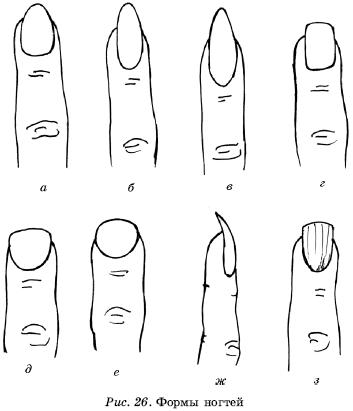Форма ногтей содержит
